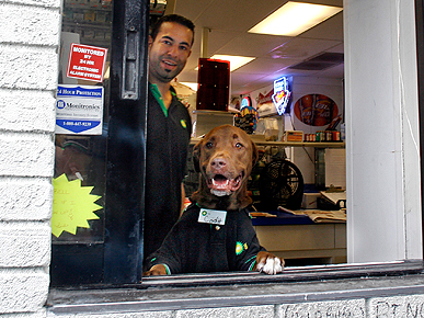 The Water Bowl: Cody the Gas Station Dog Must Go; Plus, The Original LOLCat?