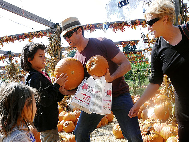 PUMPKIN PICKING photo | Hugh Jackman