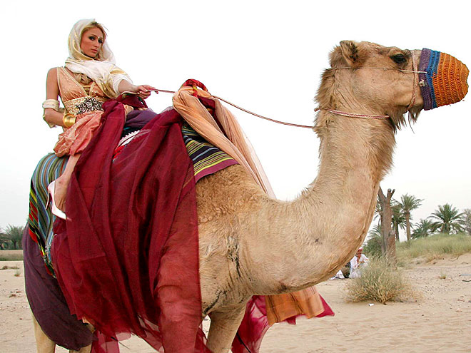 CAMEL LOT photo | Paris Hilton
