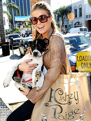 PET PROJECT photo | Carmen Electra