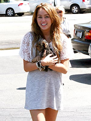 PET PROJECT photo | Miley Cyrus