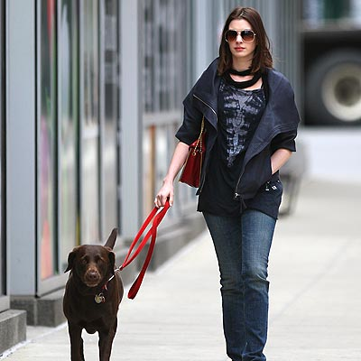 DOG WALKER photo | Anne Hathaway