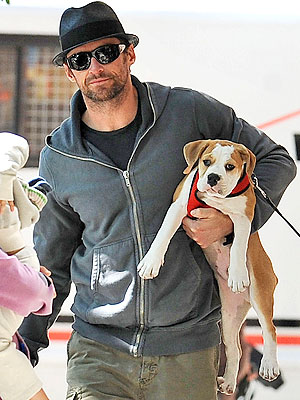 PET PROJECT photo | Hugh Jackman