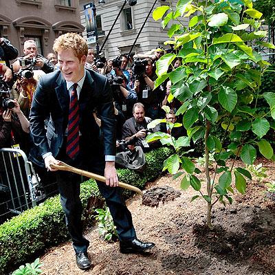 GREEN THUMB photo   Prince Harry