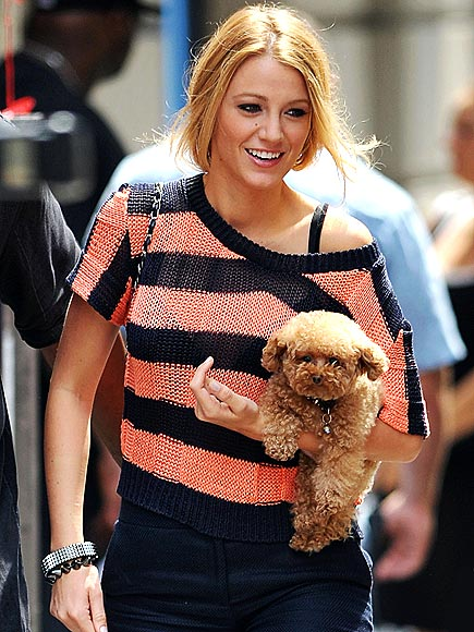 PAMPERED POOCH photo | Blake Lively