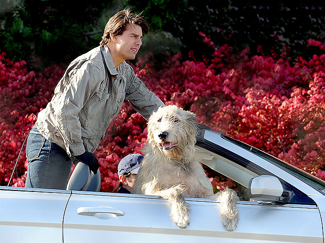 RIDING SHOTGUN photo | Tom Cruise