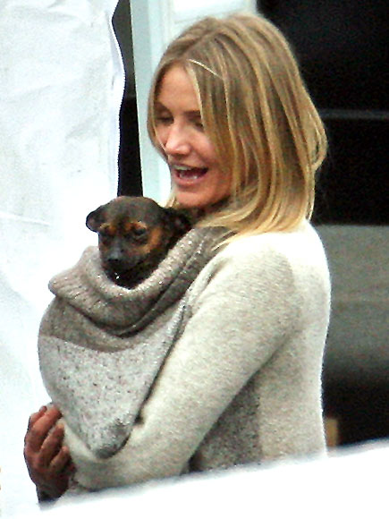 DOG DAY photo | Cameron Diaz
