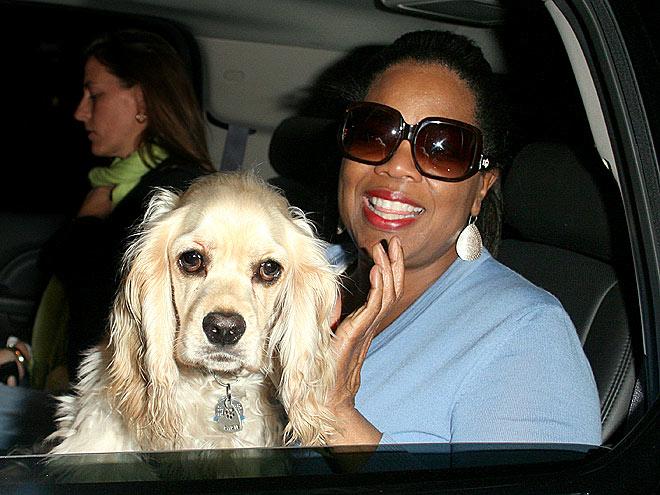 PUPPY LOVE photo   Oprah Winfrey