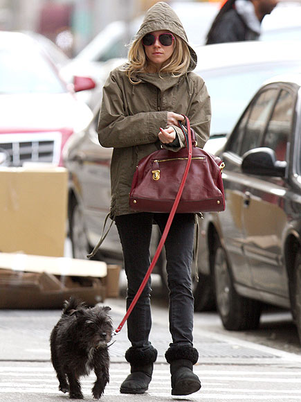 PUP PATROL photo | Sienna Miller