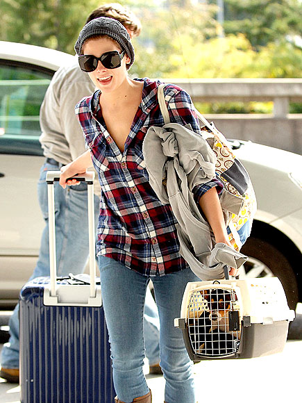 PUPPY CARGO photo | Ashley Greene