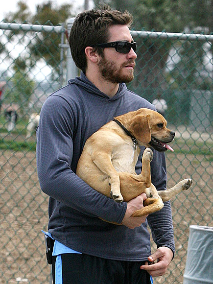 DOGGONE IT