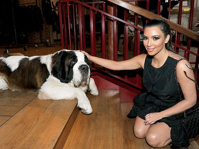 LIFE IS 'RUFF' photo   Kim Kardashian