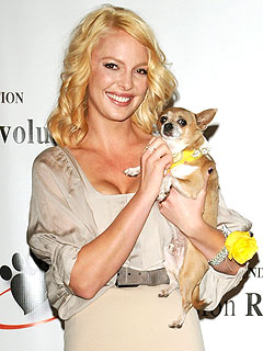 Katherine Heigl: I&#39;m a &#39;Mad Dog Lady&#39; | Katherine Heigl