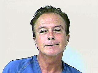 David Cassidy Arrested for DUI | David Cassidy