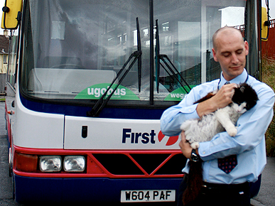 British Bus-Riding Cat Killed by Hit and Run Driver