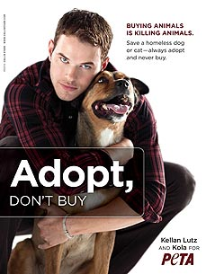 FIRST LOOK: Kellan Lutz & Dog Kola's Pet Adoption Ad