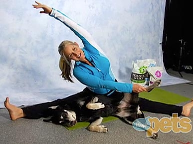 VIDEO: 3 Doga Positions to Try with Your Pooch!