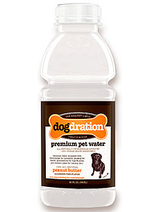 A Flavorful Power Drink Just for Dogs: Dogdration