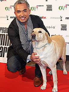 Cesar Millan's Next Mission: To Build an 'International Pack'