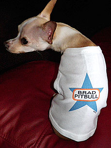 Doggie Tees Turn Brad Pitt into Brad Pitbull &#8211; Just for Fun!