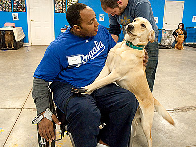 'Through a Dog's Eyes' Examines Bond Between Service Dogs and Humans