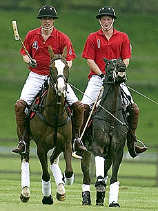 Prince William and Harry 'Very Saddened' by Death of Polo Pony