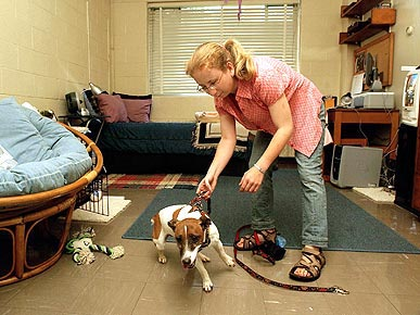 The Water Bowl: Pets in Dorms Becoming More Popular; Plus: 'Ugly' Cat Finds a Home