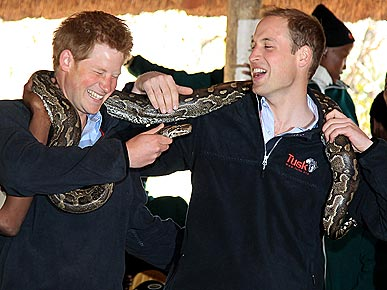 Spotted: Princes William and Harry Try On a Python