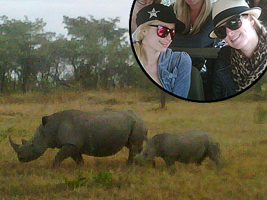 Paris Hilton on African Safari: 'Giraffes Are Hot'