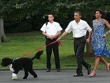 Trainer: Obamas are 'Doing a Good Job' With Bo