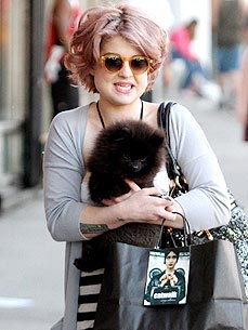 Kelly Osbourne&#39;s Pup Sid Poops &#39;Everywhere&#39;