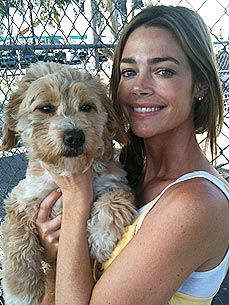 Denise Richards Dreams of Opening an Animal Sanctuary