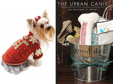 The Urban Canis: A One-Stop Shop for Chic City Pups