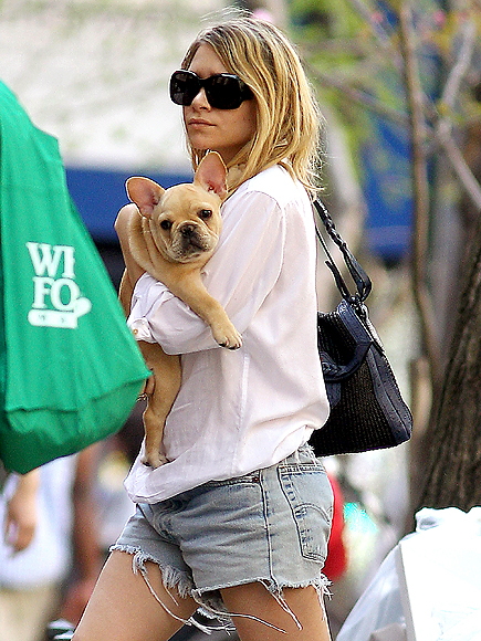 PUPPY PAL photo | Ashley Olsen