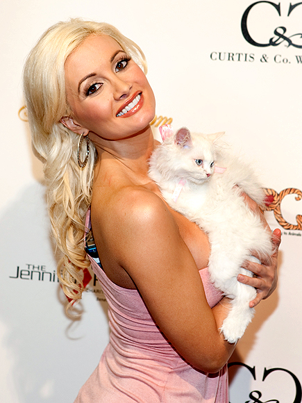 KITTEN CABOODLE photo | Holly Madison