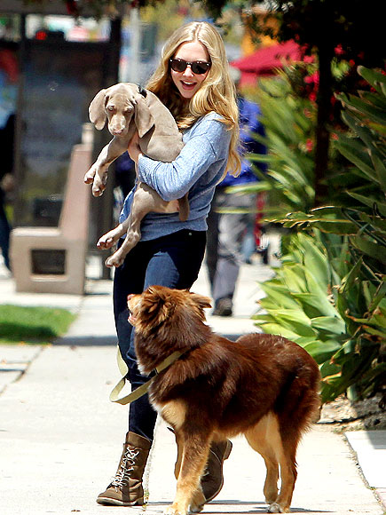 PUPPY LOVE photo | Amanda Seyfried