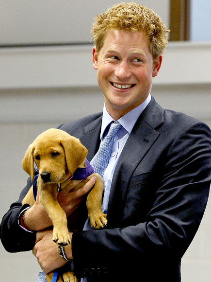 CREATURE COMFORT photo | Prince Harry
