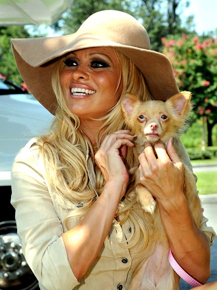 HATS OFF TO PAM! photo | Pamela Anderson