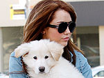 Miley Cyrus's Doggy Duty | Miley Cyrus
