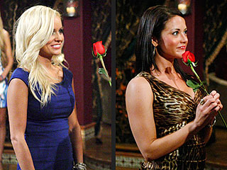 Bachelor Brad - THE BACHELOR FINALE - Did He Pick the Right Woman ...