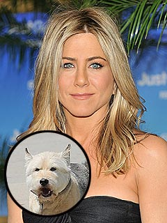 Jennifer Aniston's Dog Dies