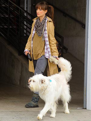 Olivia Wilde: My Dog Gets More Swag Than I Do
