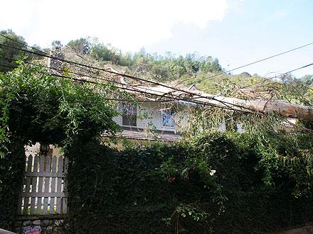 Eric Dane & Rebecca Gayheart's House Hit by Destructive Winds | Eric Dane