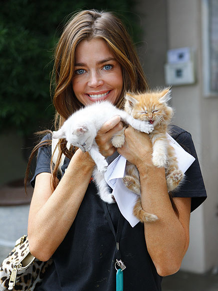 DENISE RICHARDS photo | Denise Richards
