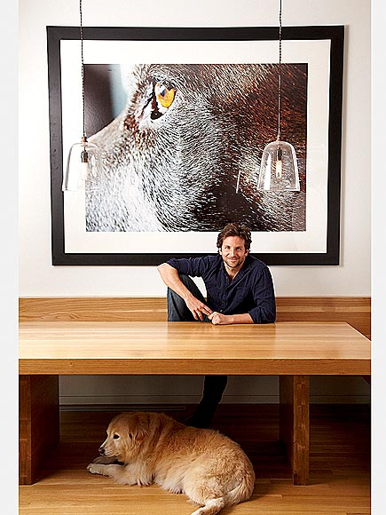 ANIMAL WALL ART photo | Bradley Cooper