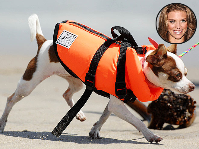 FIDO FLOAT LIFE VEST, $18.99
