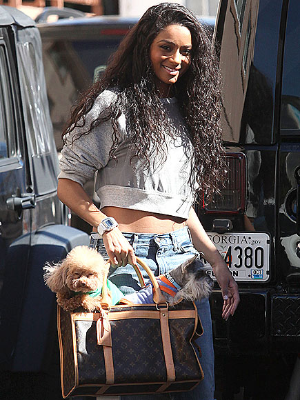 LOUIS VUITTON CARRIER, $1,920