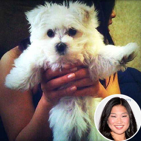 PAWS UP photo | Jenna Ushkowitz
