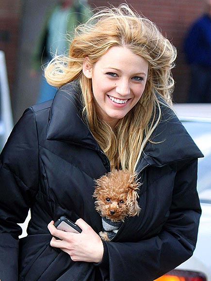 GUEST STAR photo | Blake Lively