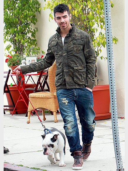 CURBSIDE CUTIE photo | Joe Jonas